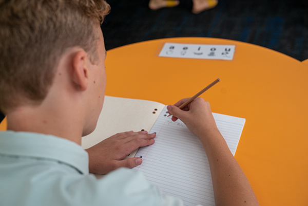 A primary school student writes in his book