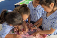 Students from St Brigid's Catholic Primary School Marrickville working on a project