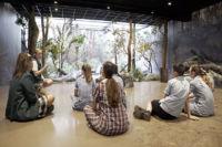 Sydney Catholic Schools students learning about wildlife conservation at Taronga Zoo