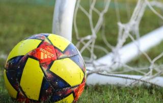 Soccer ball beside net